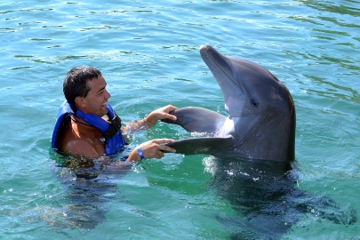 Dolphin Bay im Atlantis The Palm Dubai